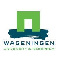 Vacature PhD Ethics